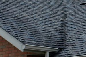 Shingled Roofs in Ludlam FL | Roofing Contractors | 954-60...
